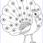 Peacock Coloring Awesome Photos Peacock Coloring Page Stock Vector Art & More Of