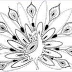 Peacock Coloring Awesome Photos Peacock Coloring Pages