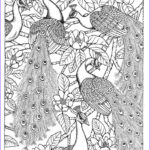 Peacock Coloring Best Of Gallery Peacock Coloring Page Card Ideas Peacocks