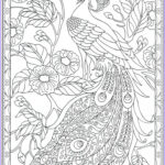 Peacock Coloring Best Of Photos 17 Best Images About Colouring Pages On Pinterest