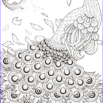 Peacock Coloring Book Beautiful Photos Peacock Coloring Pages For Adults Coloring Home