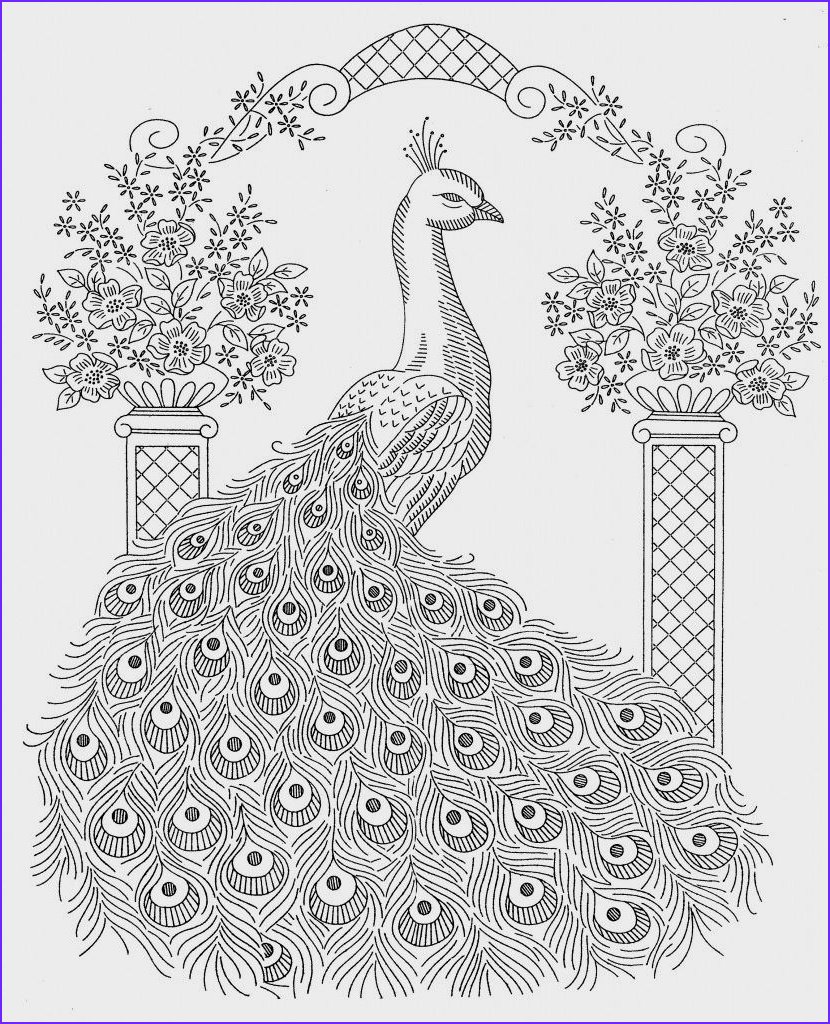 Peacock Coloring Book Beautiful Photos Peacock Coloring Pages for Kids