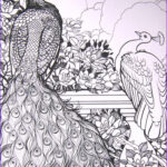 Peacock Coloring Book Best Of Images The Beautiful Peacock Coloring Pages