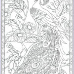Peacock Coloring Book Best Of Stock Peacock Coloring Page 24 31