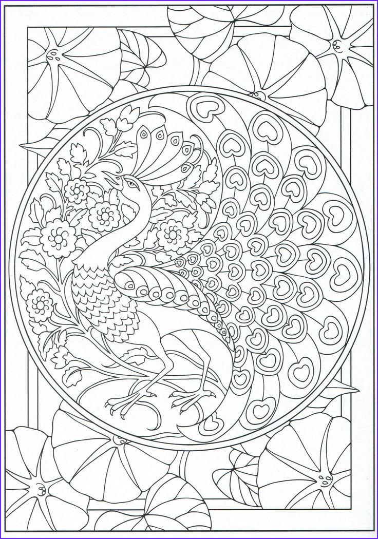 Peacock Coloring Book Best Of Stock Peacock Coloring Page for Adults 11 31