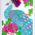 Peacock Coloring Book Cool Images Step By Step Coloring Peacock Feathers The Coloring