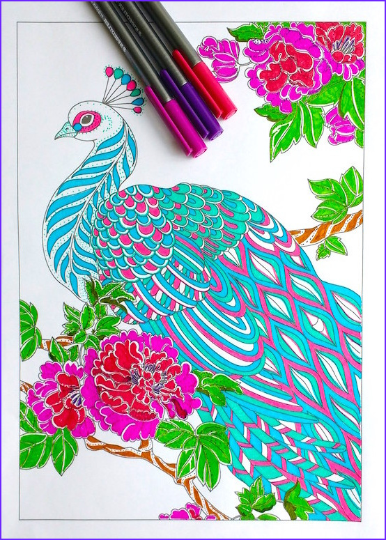 step step coloring peacock feathers
