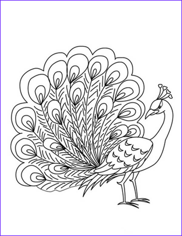 Peacock Coloring Book Elegant Image Printable Peacock Coloring Pages E