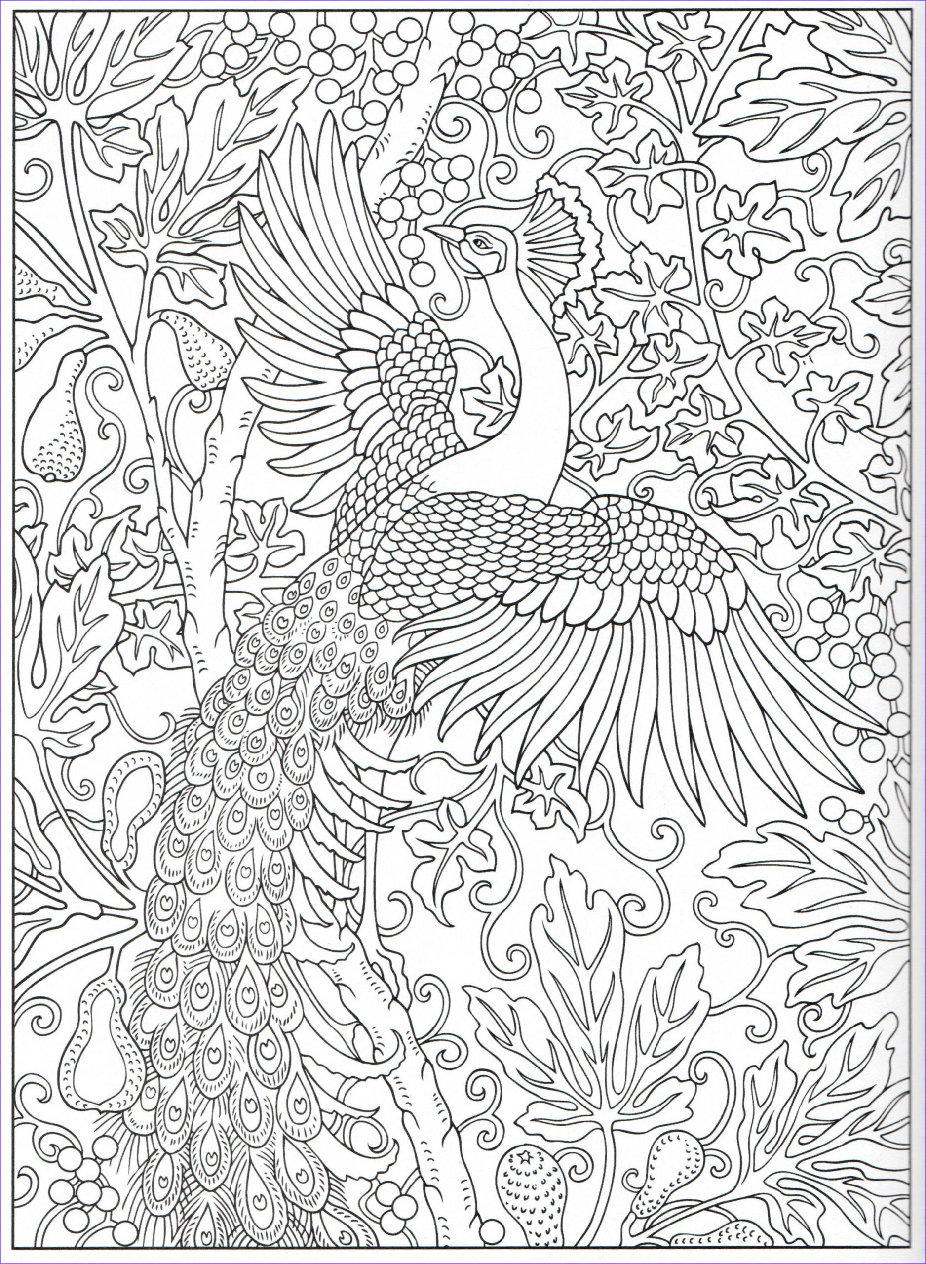 Peacock Coloring Book Inspirational Collection Peacock Coloring Page 15 31