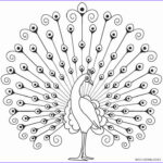 Peacock Coloring Book Inspirational Collection Printable Peacock Coloring Pages For Kids