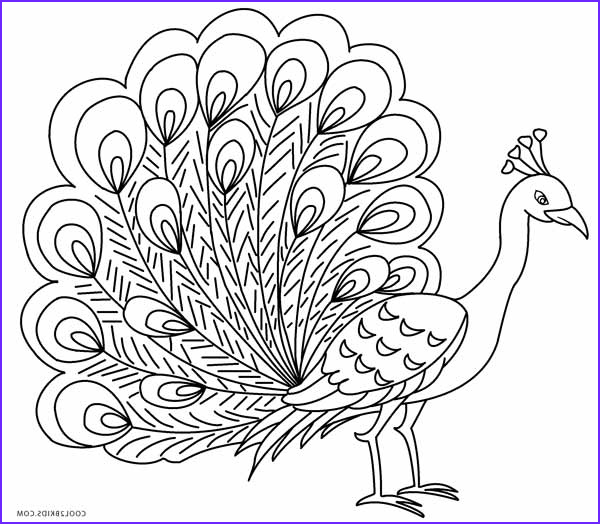 Peacock Coloring Book Inspirational Images Printable Peacock Coloring Pages for Kids