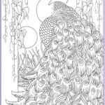 Peacock Coloring Book Luxury Stock 17 Best Images About Coloring Book On Pinterest