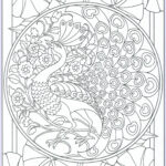 Peacock Coloring Book Luxury Stock Peacock Coloring Page For Adults 11 31