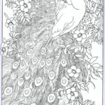 Peacock Coloring Book New Image Peacock Feather Coloring Pages Colouring Adult Detailed