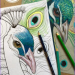 Peacock Coloring Luxury Images Peacock Coloring Page