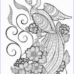 Peacock Coloring New Images 60 Best Images About Coloring Pages Peacocks On