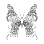 Pencils For Adult Coloring Books New Photos Butterflies Adult Coloring Book With Color Pencils Color