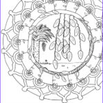 Personalized Adult Coloring Books Best Of Stock Custom Coloring Page Mandala Coloring Size 5 Adult Coloring