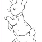 Peter Rabbit Coloring Pages Awesome Stock 46 Best Images About Peter Rabbit On Pinterest