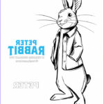 Peter Rabbit Coloring Pages Best Of Images Peter Rabbit Movie Coloring Pages Redhead Baby Mama