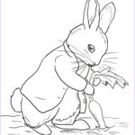 Peter Rabbit Coloring Pages Inspirational Collection Peter Rabbit Stealing Carrots Coloring Page