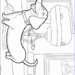 Pets Coloring Pages Beautiful Stock The Secret Life Pets Coloring Pages – Birthday Printable