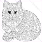 Pictures To Coloring Pages Luxury Photography Cat Kitten Coloring Page For National Pet Day Greeting