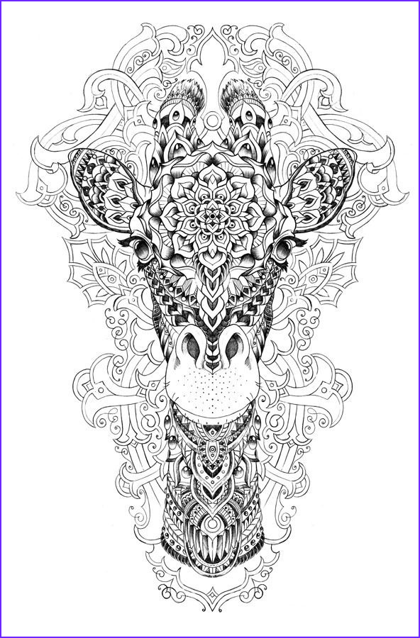 Pinterest Coloring Pages Awesome Photography Pin by Gena andreano On More Coloring