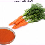 Plant Based Food Coloring Unique Image Carrot Extract Ve Able Based Food Coloring Beta