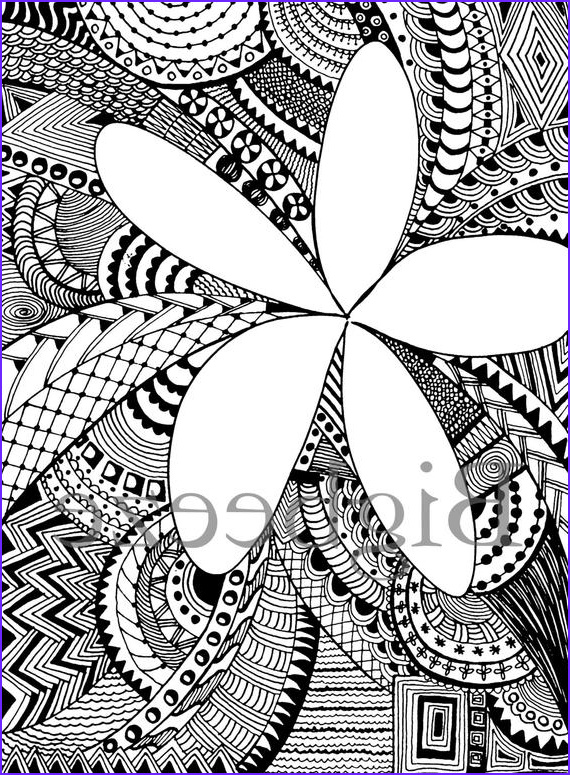 plumeria flower adult coloring pages