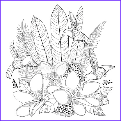 vector flying hummingbird plumeria flower and palm leaf in contour style isolated on gm