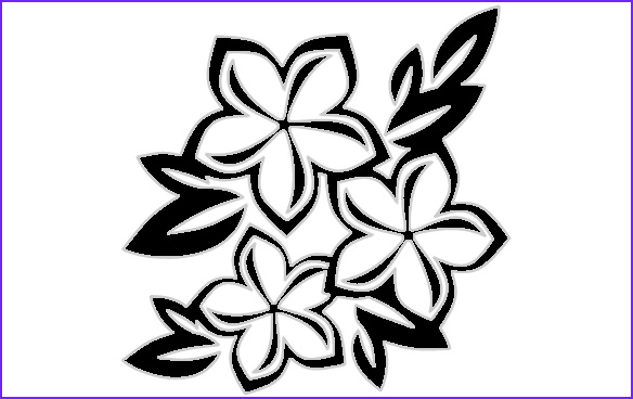 Plumeria Coloring Beautiful Images Plumeria Free Coloring Pages