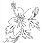 Plumeria Coloring Inspirational Photos Plumeria Flower Coloring Pages At Getcolorings