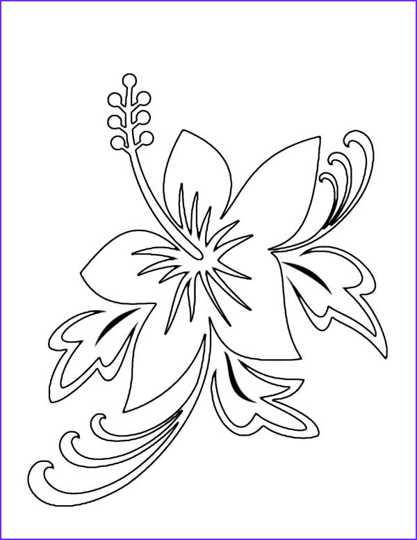 plumeria flower coloring pages