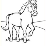 Ponies Coloring Awesome Photography Pony Coloring Pages Hellokids