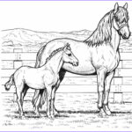 Pony Coloring Beautiful Image Horse Coloring Pages For Kids