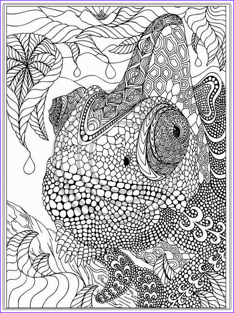 Printable Adult Coloring Books Awesome Photography Printable Iguana Adult Coloring Pages
