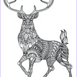Printable Animal Coloring Pages Cool Stock Animal Mandala Coloring Pages Best Coloring Pages For Kids