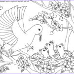 Printable Bird Coloring Pages Beautiful Gallery Birds Coloring Page