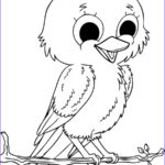 Printable Bird Coloring Pages Elegant Photos Baby Birds Coloring Pages