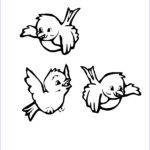 Printable Bird Coloring Pages New Stock Bird Coloring Pages