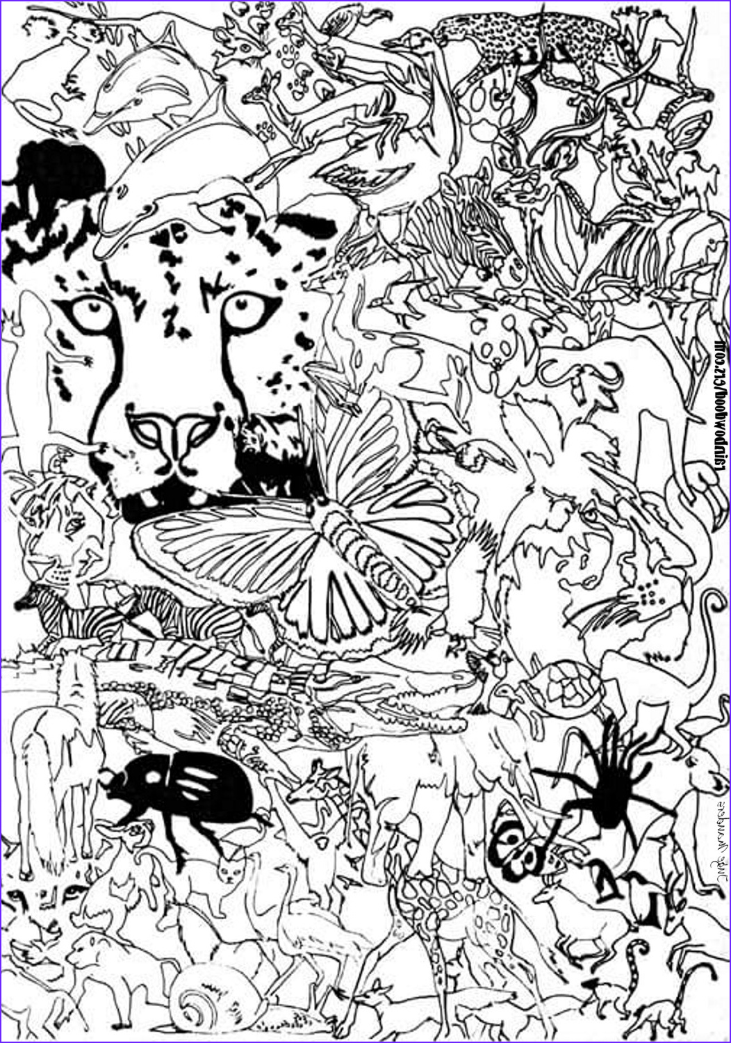 Printable Coloring Book Pages Cool Photos Free Printable Adult Coloring Pages