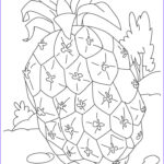 Printable Coloring Book Pages New Images Free Printable Pineapple Coloring Pages For Kids