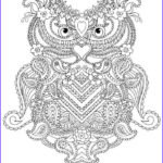 Printable Coloring Pages For Adults Abstract Awesome Photography Coloring Pages For Adults Abstract