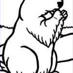 Printable Coloring Pages Luxury Collection Groundhog Coloring Pages Best Coloring Pages For Kids