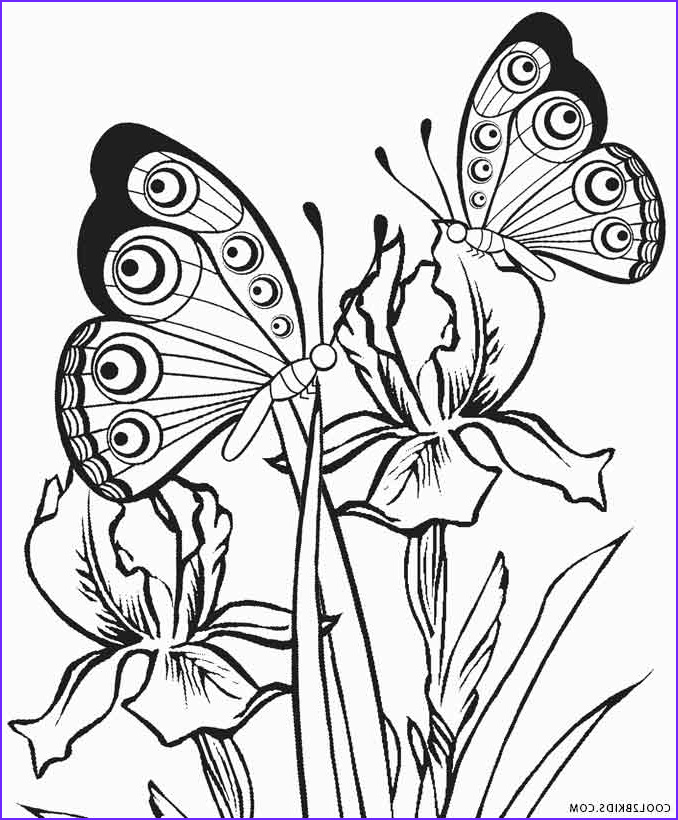 Printable Coloring Pages Of Flowers and butterflies Awesome Images Printable butterfly Coloring Pages for Kids