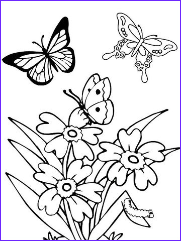 Printable Coloring Pages Of Flowers and butterflies Inspirational Photos Printable Spring Coloring Pages