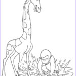 Printable Coloring Sheets Best Of Photos Curious George Coloring Pages