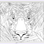 Printable Complex Coloring Pages Beautiful Photos Get This Printable Plex Coloring Pages For Grown Ups