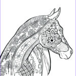 Printable Complex Coloring Pages Best Of Gallery Plex Animal Coloring Pages At Getcolorings